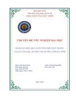 Đánh giá hiệu quả nuôi tôm thẻ chân trắng tại xã cẩm lộc ,huyện cẩm xuyên ,tĩnh hà tĩnh
