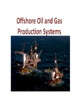 Offshore oil and gas production systems