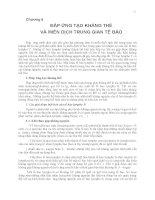 ĐÁP ỨNG TẠO KHÁNG THỂ VÀ MIỄN DỊCH TRUNG GIAN TẾ BÀO