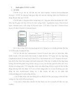 Lập trình mạng (Network Programming)