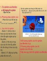 Bài giảng sinh học 9 lai một cặp tính trạng (1)