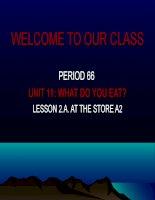 ENGLISH 6 UNIT 11 a23