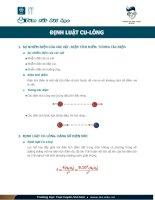 Định luật cu lông vật lý 11