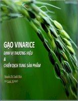 Gạo vinarice định vị thương hiệu và chiến dịch tung sản phẩm