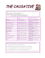 1086 the causative