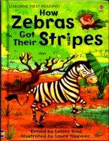 How zebras got their stripes (1)