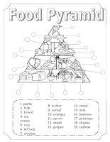 4397 food pyramid
