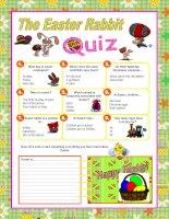 5076 easter rabbit quiz
