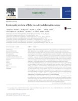 Systematic review of falls in older adults with cancer