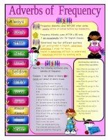 3943 frequency adverbs