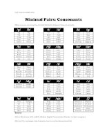 009   minimal pairs consonants