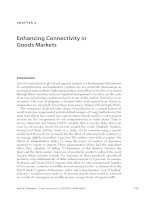 Enhancing Connectivity in Goods Markets