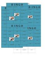 9335 bingo family