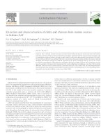 Extraction and characterization of chitin and chitosan from marine sources in Arabian Gulf