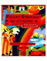 Picture grammar starter