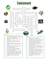 40545 environment  crossword puzzle