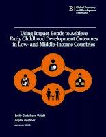 Impact bonds for ECDweb