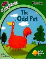 Odd pet