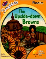 The upside down browns