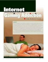 Internet gaming addiction