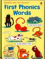 Usborne first phonics words