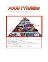 717 food pyramid