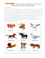 Flashcards for Kids: Animals Sounds
