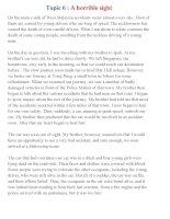 Bài luận mẫu theo chủ đề ( phần 2 )