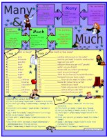 5053 many  much  for elementary level  3 tasks  with key  fully editable