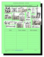 678 vocabulary worksheet  animals