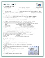 islcollective worksheets preintermediate a2 intermediate b1 high school reading speaking writing so or such  adjectives  1920378031557ebe0b1dece0 24871609