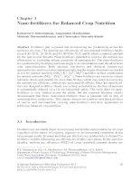 Nano fertilizers for balanced crop nutrition