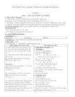 ôn tập các dạng toán cơ bản số học 6