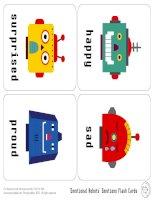 mrpfc13 emotion flashcards ltr