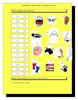 3393 vocabulary matching worksheet  body parts 2