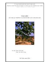 Kỹ thuật trồng cây chanh leo (chanh dây)