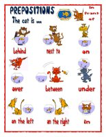 7657 prepositions the cat is