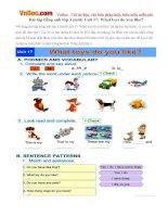 Bài tập tiếng anh lớp 3 (mới) Unit 17: What toys do you like?