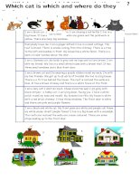 islcollective worksheets elementary a1 preintermediate a2 elementary school high school reading writing cats and houses 4617341795700e47beeba18 64703052