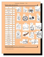 3771 vocabulary matching worksheet  pets