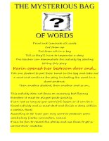 3139 mysteryous bag of words