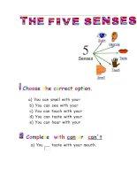 23607 five senses
