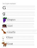 53877 the alphabet  letter g