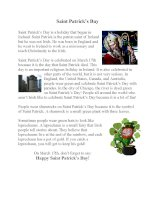 51184 saint patricks day information