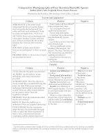 4eSample poster 10 evaluation