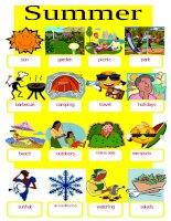 25952 summer pictionary