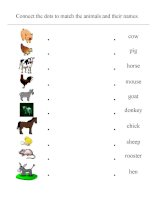 10044 domestic animals  matching sheet