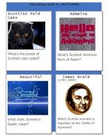 29205 scotlandspeaking cards 5
