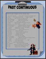 13772 past continuous tense