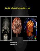 Giải phẫu và hình ảnh học giải phẫu sọ   não